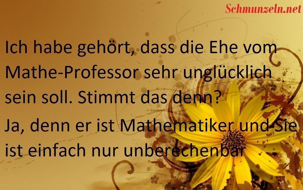 matheprofessor