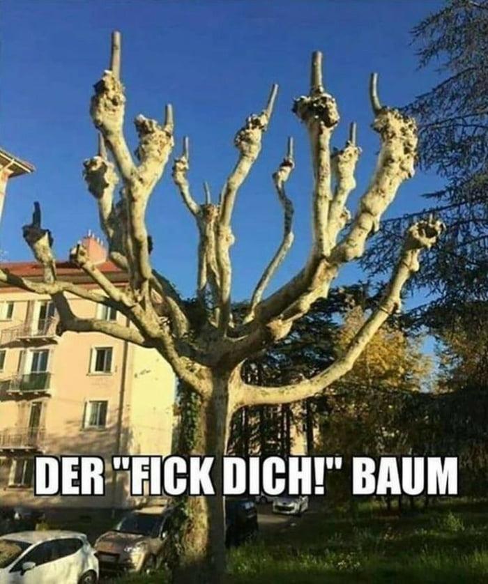 Schmunzeln.net – Picdump #029